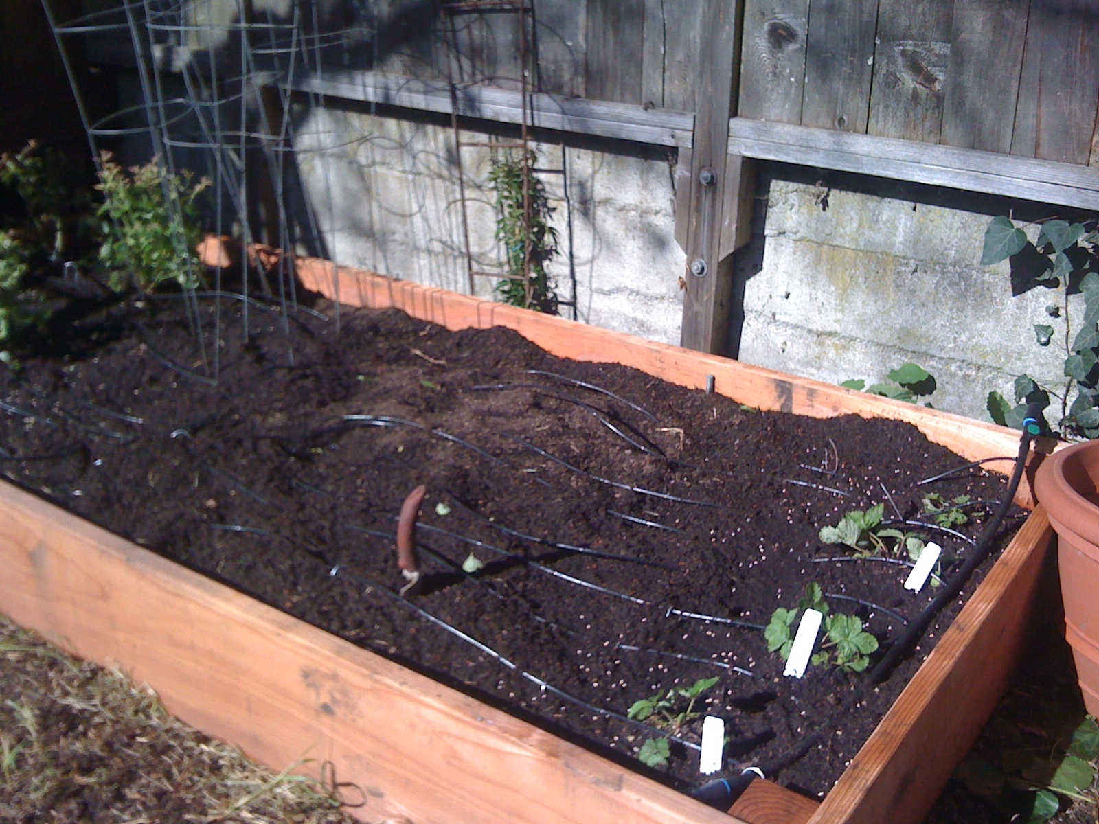 Brand new vegetable raised bed, by Water Wise Landscaping.