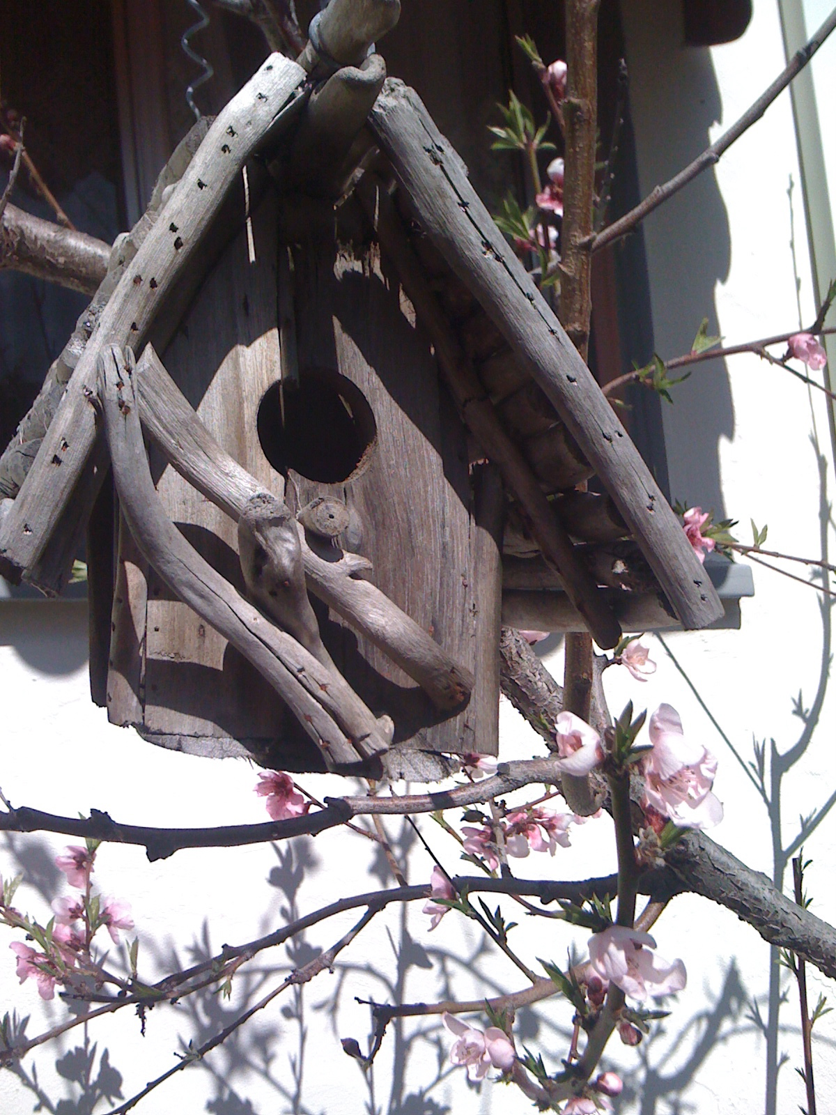 A rustic birdhouse and peach blossoms.